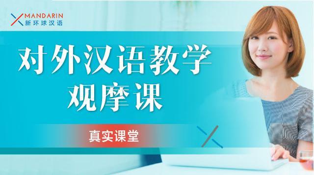 对外汉语教学观摩课