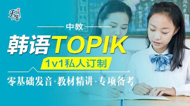 VIP一对一私人定制课程(中教)