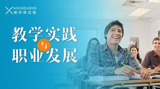 教学实践与职业发展