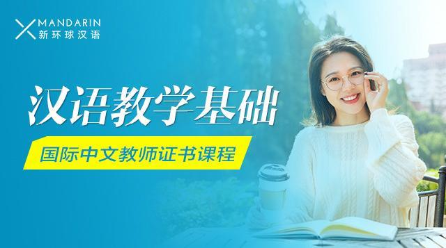汉语教学基础